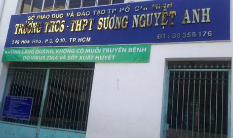 Mot doanh nghiep 'chiu va lay' vi dinh liu voi Nha xe Thanh Buoi? - Anh 3