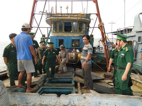 Bien phong 'manh tay' chong buon lau tren bien dip Tet Dinh Dau - Anh 1