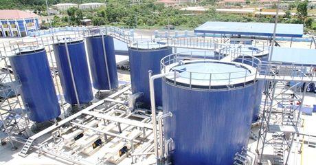 Gan het nam, Hoa dau Petrolimex xin giam ke hoach kinh doanh vi nhua duong - Anh 1