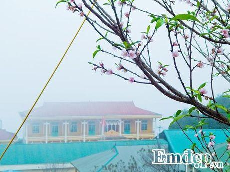 'San' may, 'san' dao no som dau dong tren thien duong Ta Xua - Anh 12