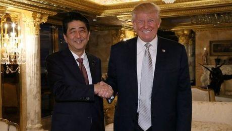"""Thu tuong Nhat """"tin tuong"""" Tong thong dac cu Donald Trump - Anh 1"""