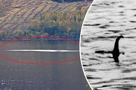 Tim thay loi giai ve quai vat ho Loch Ness? - Anh 1