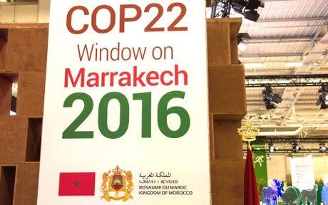 Tuyen bo hanh dong COP-22 khang dinh su ung ho Thoa thuan Paris - Anh 1