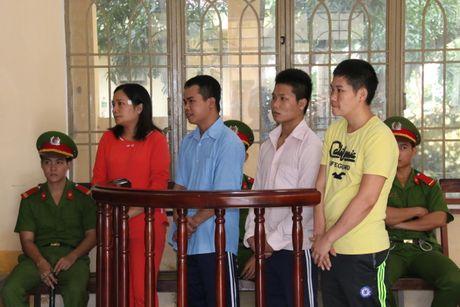 Quang Nam xet xu vu khai thac vang trai phep lam 4 nguoi chet - Anh 1