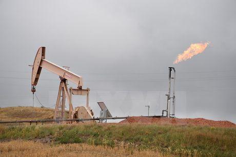 Iraq kho tham gia thoa thuan cat giam dau cua OPEC - Anh 1