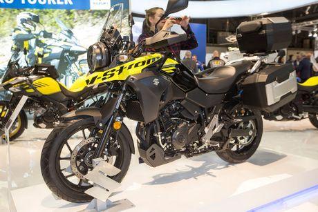 Suzuki DL250 V-Storm Xe Adventure 'gia re' moi - Anh 1