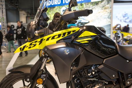 Suzuki DL250 V-Storm Xe Adventure 'gia re' moi - Anh 2