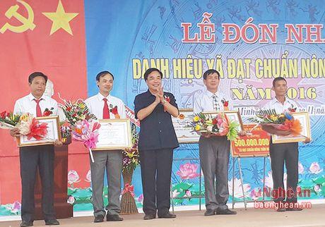 Nong dan Nghia Minh (Nghia Dan) gop hon 53 ty dong xay dung nong thon moi - Anh 2