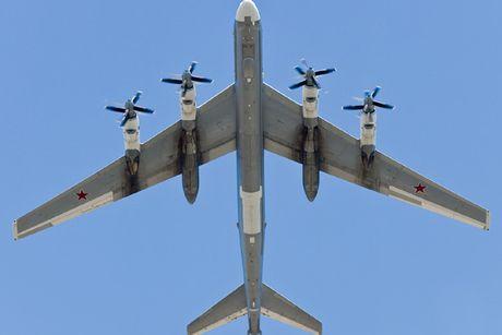 Tu-95 Bear - May bay nem bom chien luoc cua Nga - Anh 11