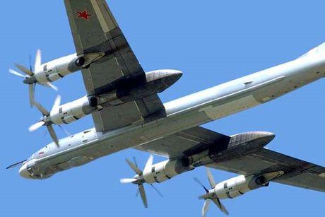 Tu-95 Bear - May bay nem bom chien luoc cua Nga - Anh 13