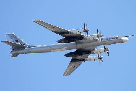 Tu-95 Bear - May bay nem bom chien luoc cua Nga - Anh 6