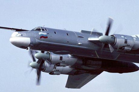 Tu-95 Bear - May bay nem bom chien luoc cua Nga - Anh 7