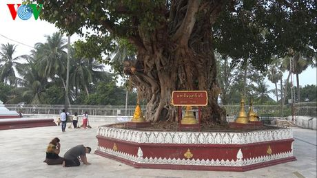 Mot vong qua mien dat Thanh tai Myanmar - Anh 12