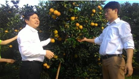 Chu tich Hoi NDVN Lai Xuan Mon tham vung cam Cao Phong - Anh 1