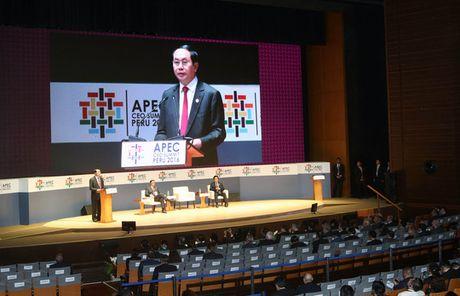 APEC thuc day tang truong, lien ket - Anh 1
