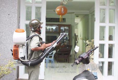 Benh do virus Zika tang nhanh tai TP Ho Chi Minh - Anh 1