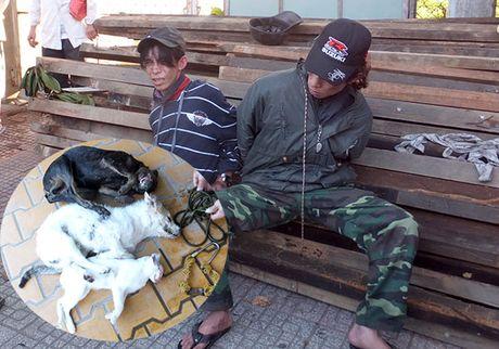 2 doi tuong nghi trom cho danh tai xe xe ruoc dau trong thuong - Anh 1