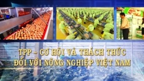 TPP - Co hoi va thach thuc doi voi nong nghiep Viet Nam - Anh 1