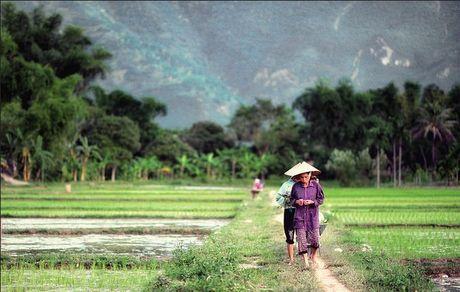 7 diem den trai nghiem mua dong o Viet Nam - Anh 10