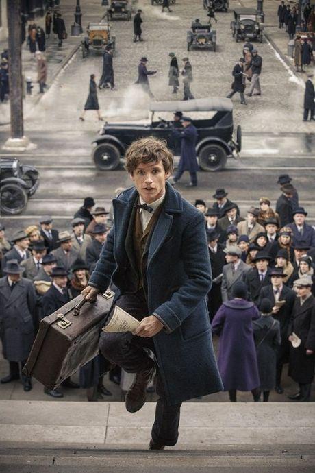 5 diem trung hop thu vi giua 'Harry Potter' va 'Fantastic Beasts' - Anh 2