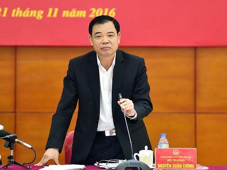 To cong tac cua Thu tuong 'truy' gay gat Tong cuc Thuy san - Anh 2
