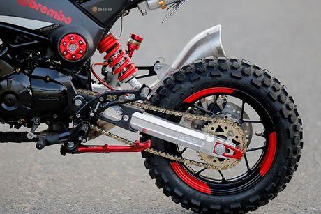 Minibike Honda MSX 125 'do cung' tai Da thanh - Anh 5