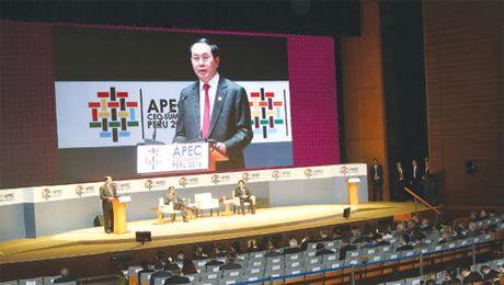 APEC can tiep tuc khang dinh vai tro khoi xuong y tuong, tang truong va lien ket kinh te - Anh 1