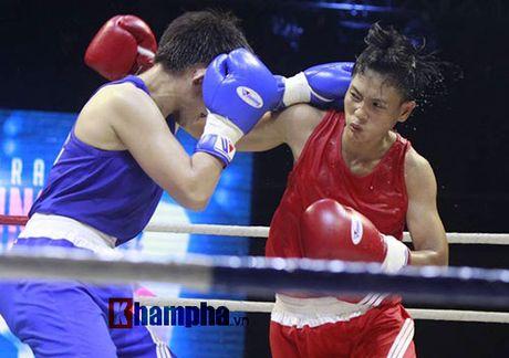 Nguoi dep doi mua xem so tai boxing Viet - Nhat - Anh 2