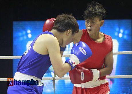 Nguoi dep doi mua xem so tai boxing Viet - Nhat - Anh 3