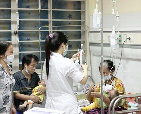 Bao dong khang thuoc o Viet Nam - Anh 1