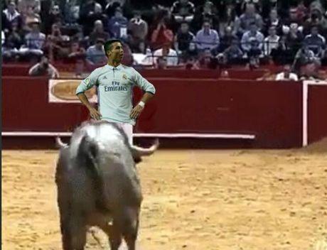 Dan cu mang che anh an mung ban thang cua Cristiano Ronaldo - Anh 4