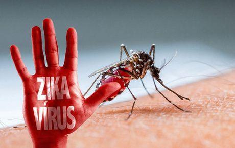 Cach nhan biet va phong chong virus Zika - Anh 1