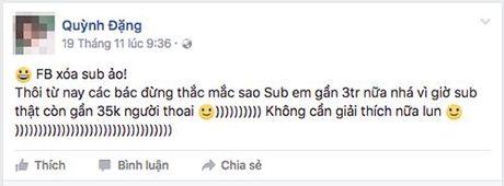 Facebook chan duong 'song ao' cua nhieu tai khoan Viet Nam - Anh 1