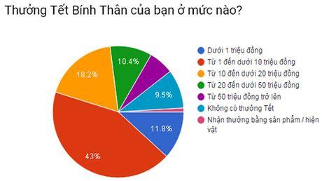 Chuyen gia du bao thuong Tet 2017 khong cao hon nam truoc - Anh 1