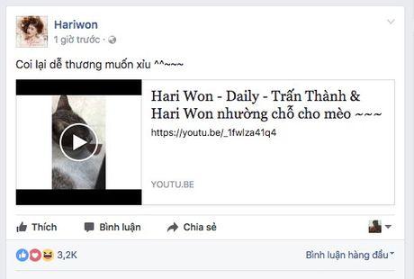 Mac thiep cuoi bi ro ri, Hari Won van 'khoe' clip Tran Thanh nhuong cho cho meo - Anh 3