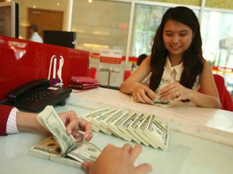Gia USD tiep tuc tang manh - Anh 1