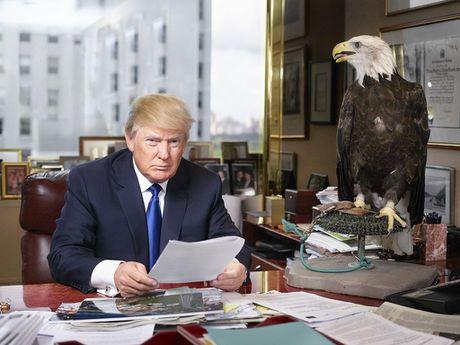 Donald Trump qua ong kinh nha bao - Anh 1