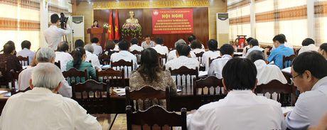 Hoi nghi phan bien ve de an tang cuong nang luc giam sat - Anh 1
