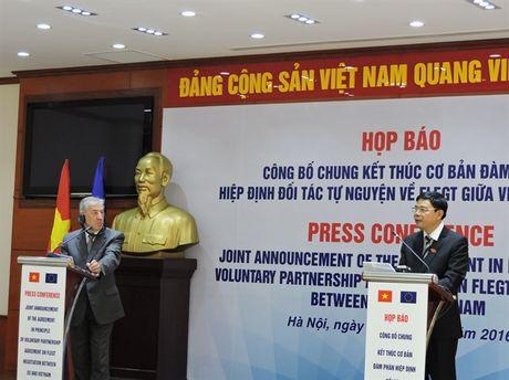 Go Viet Nam sap co 'giay thong hanh' vao EU - Anh 1