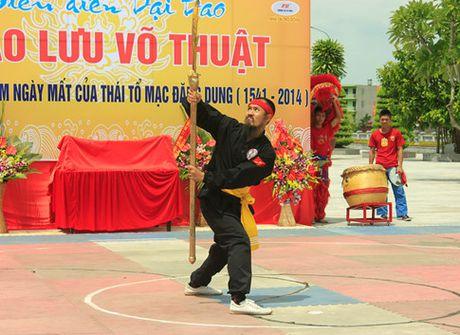 Bi mat Dinh Nam Dao - binh khi huyen thoai cua vua nuoc Viet - Anh 7
