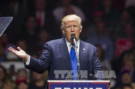 Muc tin nhiem cua ong Trump tang vot - Anh 1