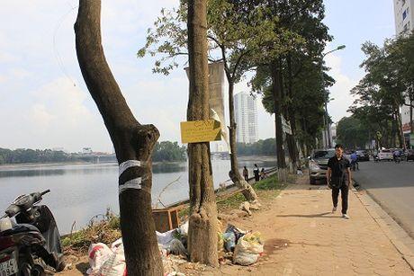Hi huu o Ha Noi: Bao cao su noi trang goc ho Linh Dam - Anh 6