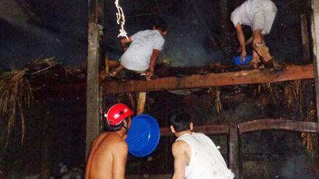 Nghe An: Chuong trau bi chay rui bat thuong trong dem - Anh 1
