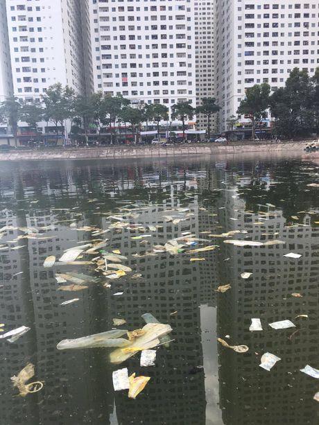 Soc voi chum anh Ho Linh Dam ngap tran bao cao su, bang ve sinh cua ong Tay - Anh 5