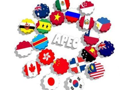 'Co hoi vang' tu Nam APEC 2017 - Anh 1