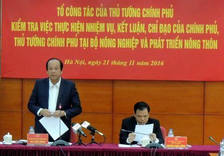 Vu cap khong 800 giay luu hanh thuy san: Khong the xu ly 'noi bo' - Anh 1