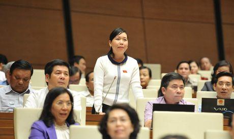 Dieu chinh truong hop no sung, dam bao quyen cong dan - Anh 1
