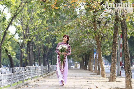 Say long hinh anh thieu nu Ha Thanh diu dang ben cuc hoa mi - Anh 6