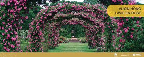 Royal Park – Thien duong xanh nguoi dan Hue khao khat - Anh 3