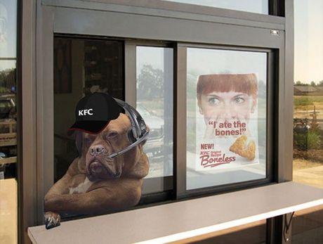 Chu cho lai xe tai khoi mao cuoc chien photoshop - Anh 3